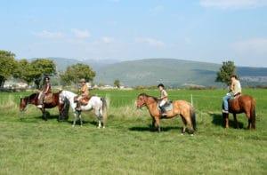 Balades à cheval à Gréoux les Bains
